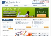 Web Consulting Service
