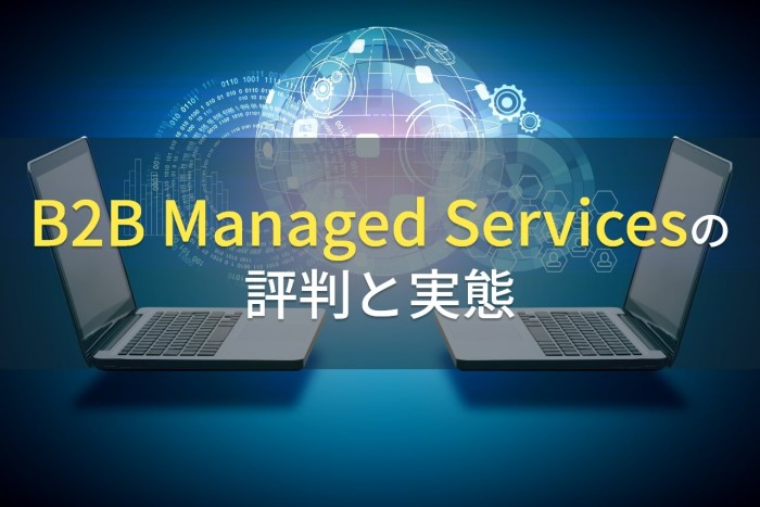 B2B Managed Services