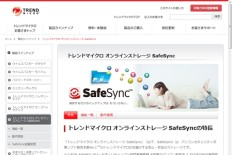 SafeSync100GB